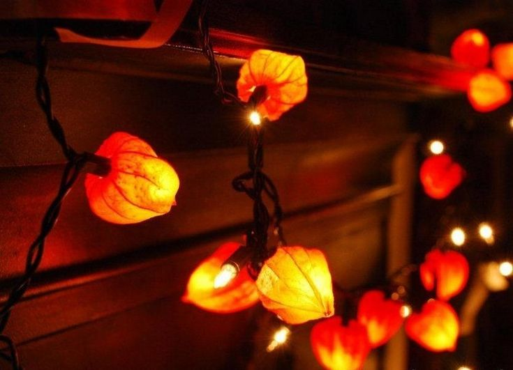 Lichterkette mit Lampionblumen aufpeppen