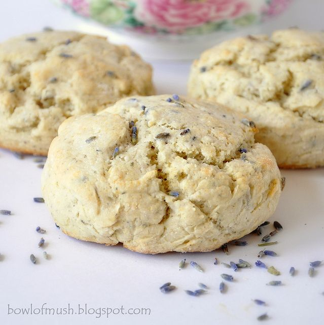 Lavender Earl Grey Scones - I'm obsessed with Lavender. I WILL make these.