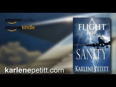 Flight for Sanity, An airline pilot's view into Commercial Jet Aviation,...