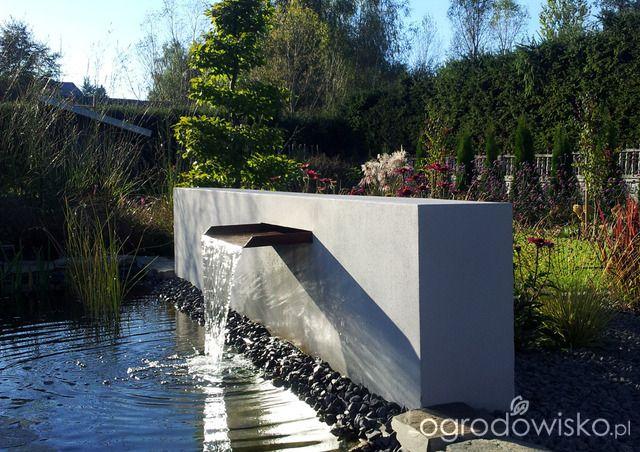 Moja codzienność - ogród Oli - strona 1019 - Forum ogrodnicze - Ogrodowisko