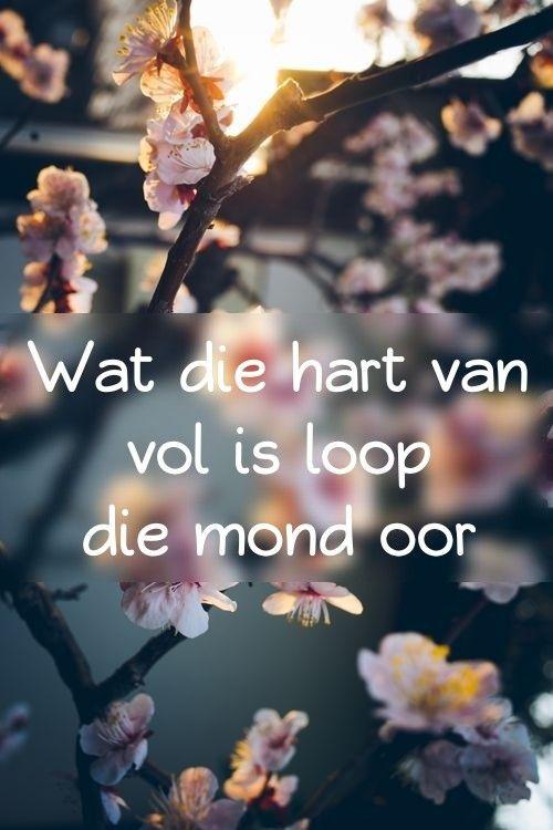 Wat die hart van vol is loop die mond oor ... #Afrikaans #Quote #WatDieHartVanVolIs