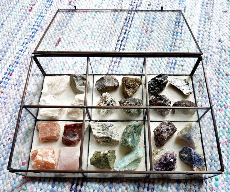 Keep crystals and minerals organized in a glass display case.