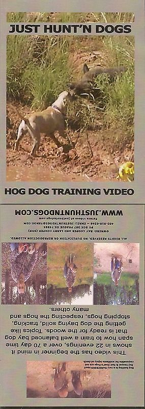 Books and Video 7304: Just Hunt N Dogs ~ Hog Dog Training ~ Wild Boar Hunting -> BUY IT NOW ONLY: $35.99 on eBay!