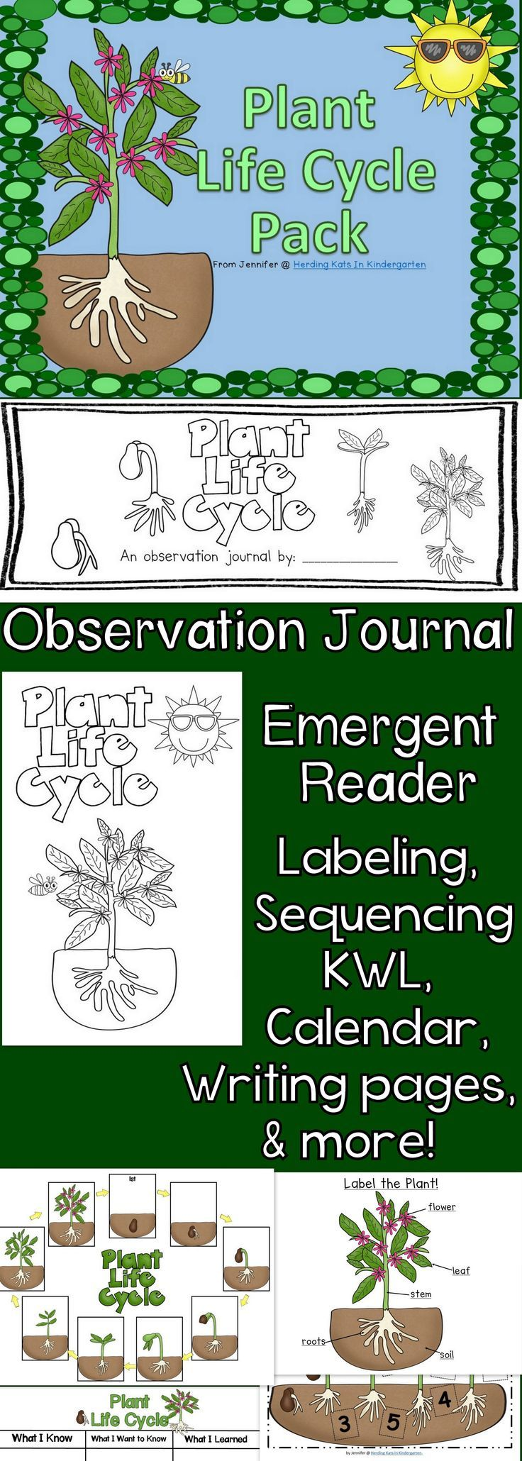 Plant Life Cycle Unit - everything you need including student observation journal, emergent reader, KWL chart, labeling pages and sequencing sheets! #lifecycle #kindergarten #plants