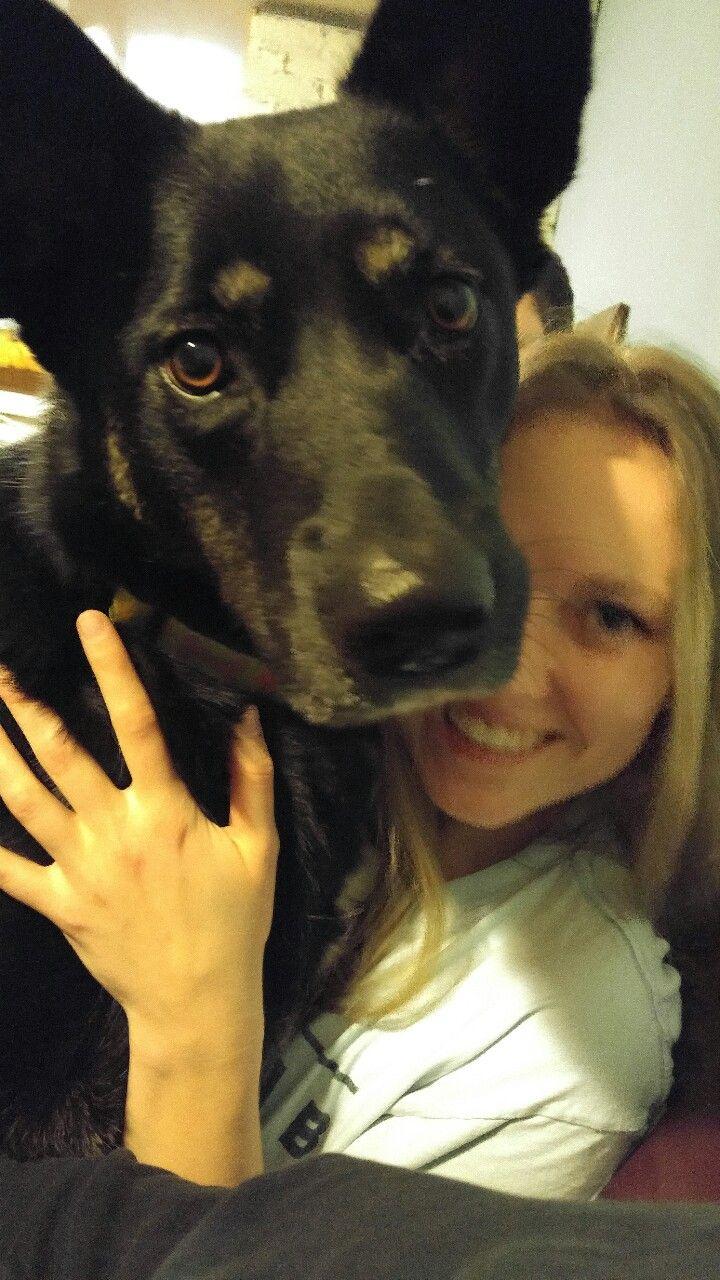 My giant lap dog, Abbey :)