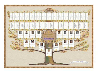 free printable family history chart family tree software and