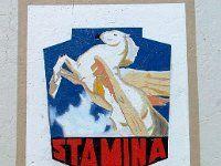 Stamina Clothes (2) (restored), Portland NSW Apr2012