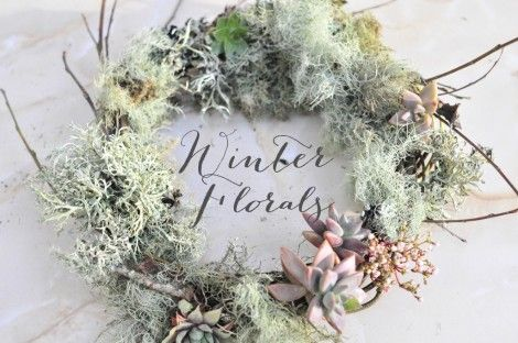Guide to winter flowers