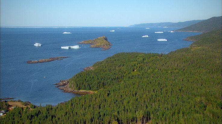 Terre-Neuve, Canada: La rive-nord de Terre-Neuve est une ribambelle époustouflante d'îles, de baies et de criques éparses. (Photo Canadarama)