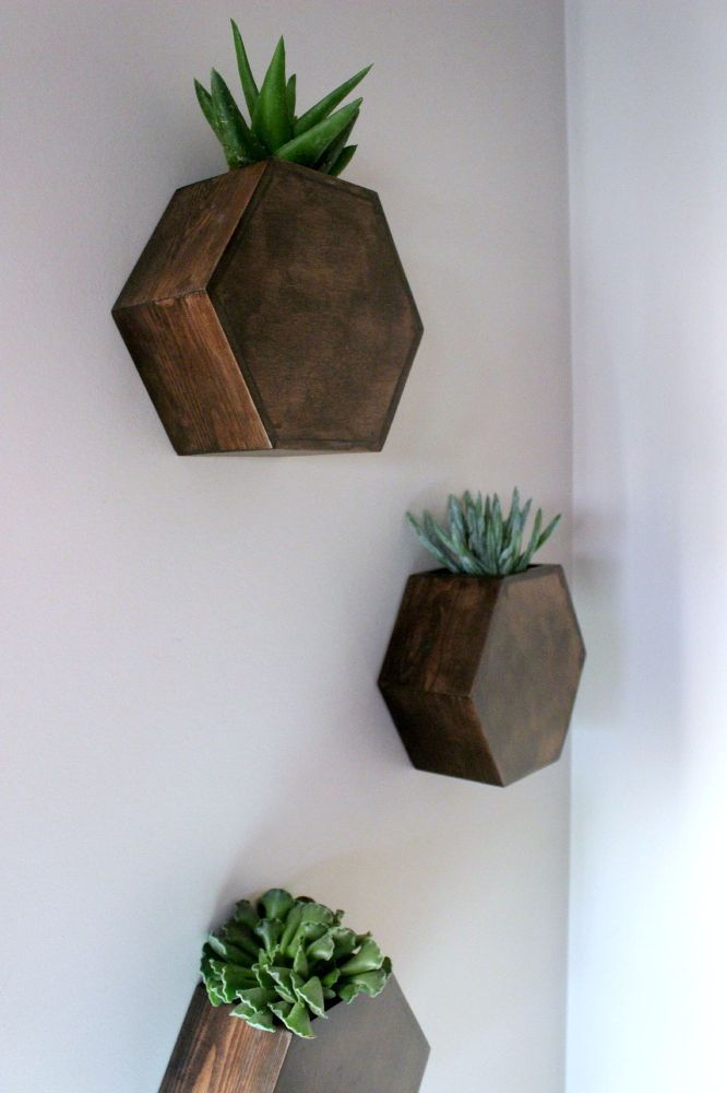 Hexagon Wall Planters | Hometalk
