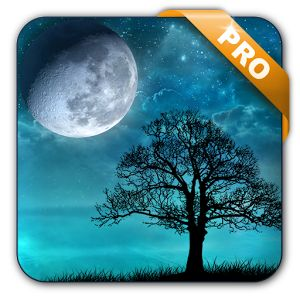 Download Dream Night Pro Live Wallpaper v1.5.10 Full