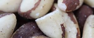 Information about Brazil Nuts for Skin Care | LIVESTRONG.COM