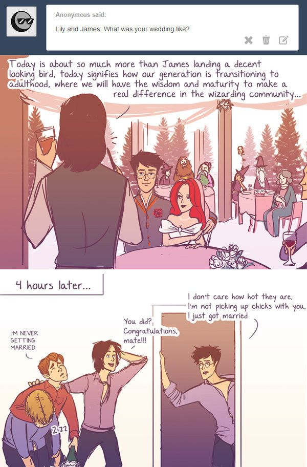 """The comics also cover post-Hogwarts events, like James and Lily's wedding.   These Hilarious """"Harry Potter"""" Comics Ask James And Lily Potter Questions"""