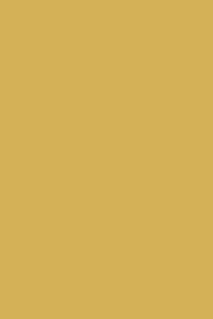 Colours | Sudbury Yellow | Farrow & Ball