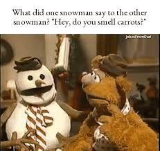 Výsledek obrázku pro carrot jokes