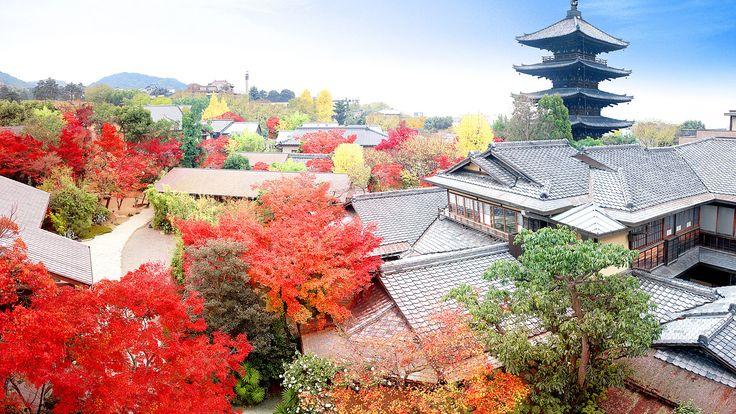WEDDING | THE SODOH HIGASHIYAMA KYOTO | Picture Tour (ピクチャーツアー) | Plan・Do・See