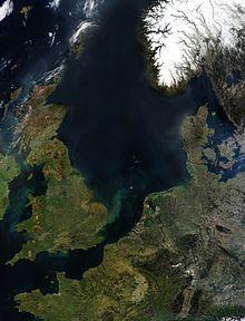 Havnær naturtype.  Rev er den maritime betegnelse for en undersøisk ryg nær…