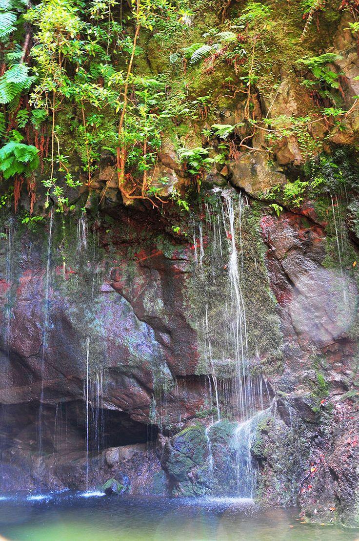 Levada das fontes à Madère - via My Sweet Escape 08.07.2015 | La randonnée des 25 fontaines à Madère (ou levada das 25 fontes e Risco en langage local) est certainement la plus populaire d'entre elles. #portugal #voyage #madeira Photo: randonnée 25 fontaines madère