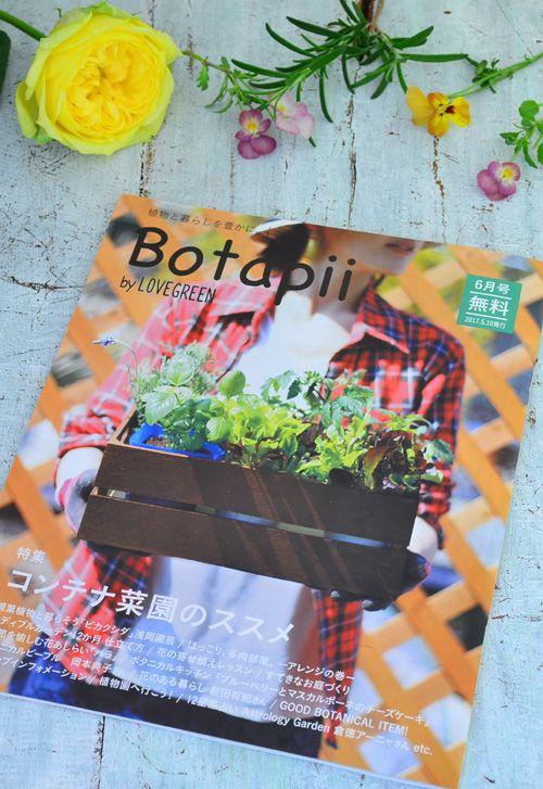 Botapii6月号 植物と暮らしを豊かに。がコンセプトで、 毎月10日発行のフリーペーパーBotapii(ボタピー)6月号、「季節を愉しむ 花あしらい」で、季節の花を使った3点の花あしらいを提案させていただきました。     Botapii(ボタピー )は、LOVEGREENから月1回発行されているフリーペーパーです。育てる、飾る、料理、植物を仕事にする人、お店や植物園情報・・・など、植物周りの色々な記事が満載です。今回の特集は「コンテナ菜園のススメ」  全国のショップや施設に設置されていますので、見ていただけたら嬉しいです。    ▼設置店はこちらからどうぞ  https://botapii.jp/shoplist/   ▼LOVEGREEN   https://lovegreen.net/