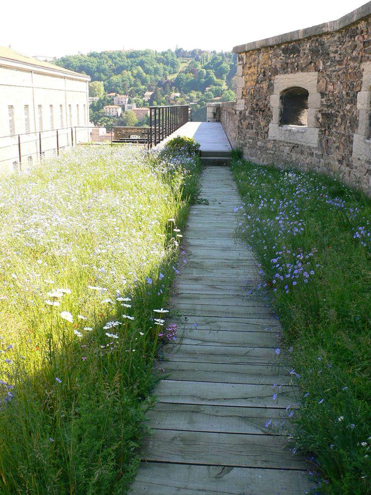 IN SITU · Fort St-Jean · Divisare