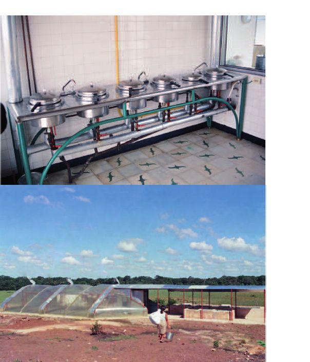 RENACIMIENTO EN EL TRÓPICO  - Cocina solar GAVIOTAS de termoaceite