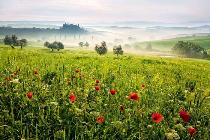 San Quirico - Toscana, Itália