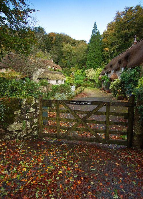 Buckland in the Moor, Dartmoor, Devon, England (Alan Howe Photography)