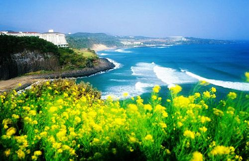 Long Weekend May! Lets Holiday in Seoul - Jeju Island for 8D7N Only Rp 12.000.000,-