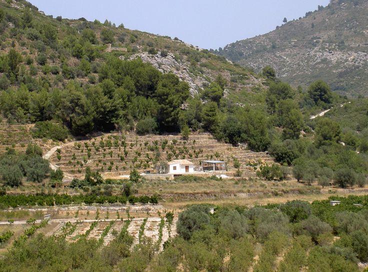 Casita cerca el pueblo Sagra, Vall de la Rectoría