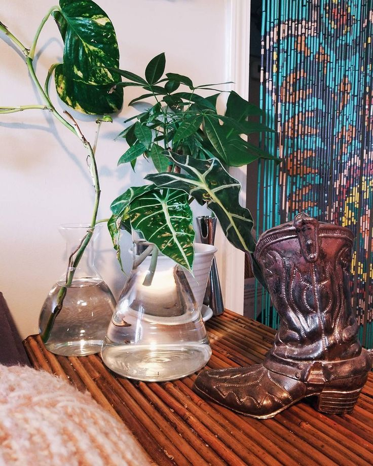 Door beads a brass cactus boot and a chemistry set full of plants. That about sums me up  || Brass boot will be listed soon! Or shoot me a DM  . . . . . . . . . . . . . #anthrohome #sodomino #apartmenttherapy #mymixedmetalsandgems #thenewbohemians #gallerywallhashtag #mycuratedaesthetic #showemyourstyled #howivintage #bohomama #earthinspiredhome #bohoinspo #sassyhomestyle #pocketofmyhome #currenthomeview #eclecticdecor #theeverygirlathome #currentdesignsituation #bohoarders #mydomaine…