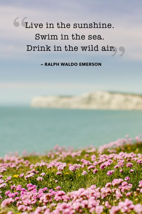 """""""Live in the sunshine. Swim in the sea. Drink in the wild air."""""""