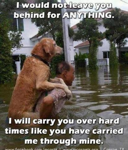 I would not leave you behind for anything. I will carry you over hard times like you have carried me through mine.