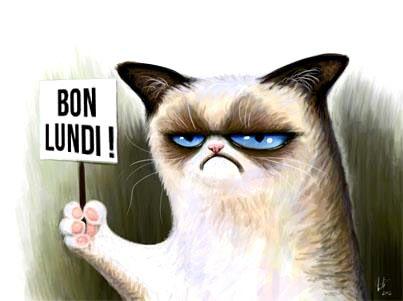 Bon lundi! Have a great Monday everyone :D