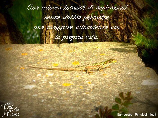 Per dieci minuti - Romanzo di Chiara Gamberale #chiaragamberale #perdieciminuti #quotes