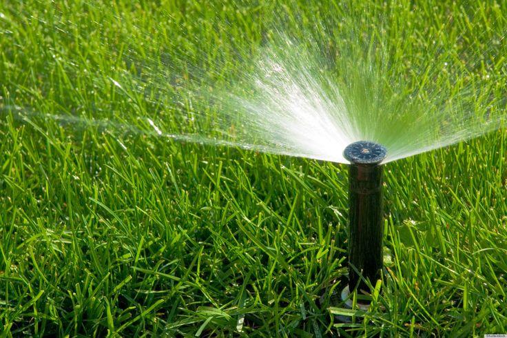 Volgens de regels van de kunst: gras zaaien http://blog.huisjetuintjeboompje.be/volgens-regels-kunst-gras-zaaien/