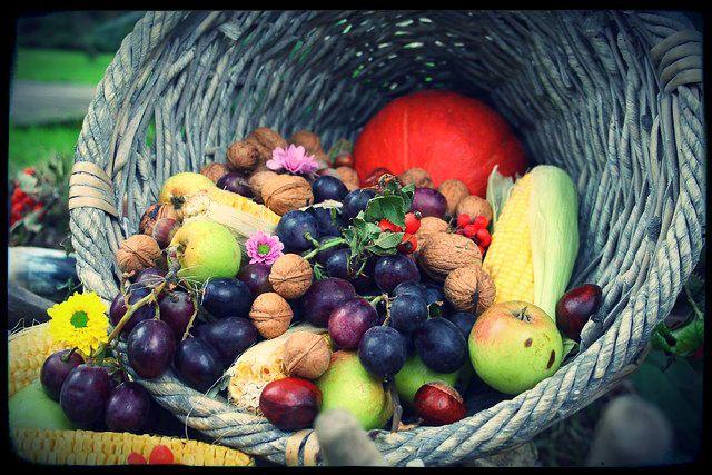 Hoy 21 de septiembre celebramos Mabon, festividad que corresponde al equinoccio de otoño y la última fiesta de la Rueda del Año.