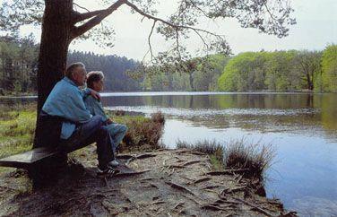 Brunvandede søer og vandhuller. Naturligt dystrofe søer og vandhuller.  Hundsø er en brunvandet sø. Velling Skov, Midtjylland. Foto: Bert Wiklund.  Søer og vandhuller med brunligt vand. Farven skyldes et højt indhold af tørv eller humusstoffer. Naturtypen er ofte meget survandet med pH 3-6, men findes også i en form med mere kalkrigt vand. De brunvandede søer findes ofte på tørvejord i moser eller på heder og kan naturligt udvikle sig mod højmoser.  Udbredelse. Naturtypen findes i mindre…