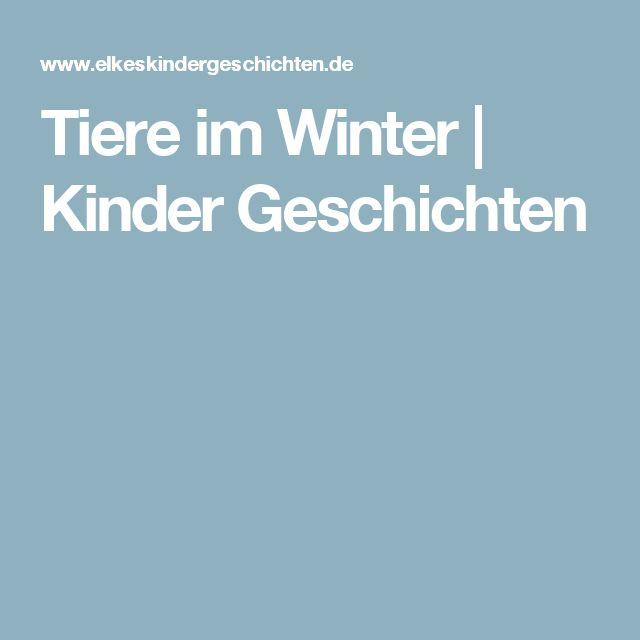 Tiere im Winter | Kinder Geschichten