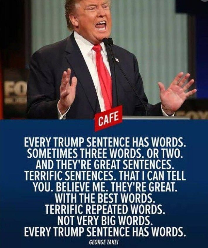 Image result for trump words are stupid things