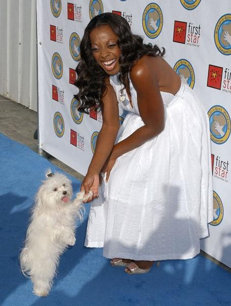 Star Jones-Reynold's Maltese Pinky http://celebritydogwatcher.files.wordpress.com/2006/07/starjones-and-pinky.jpg