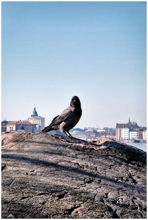 The Other Helsinki- Copyright Teemu Tuuloskorpi