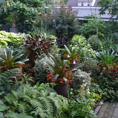 Lush tropical garden design. Note the height differences - at least 2' between ground cover & taller plants.