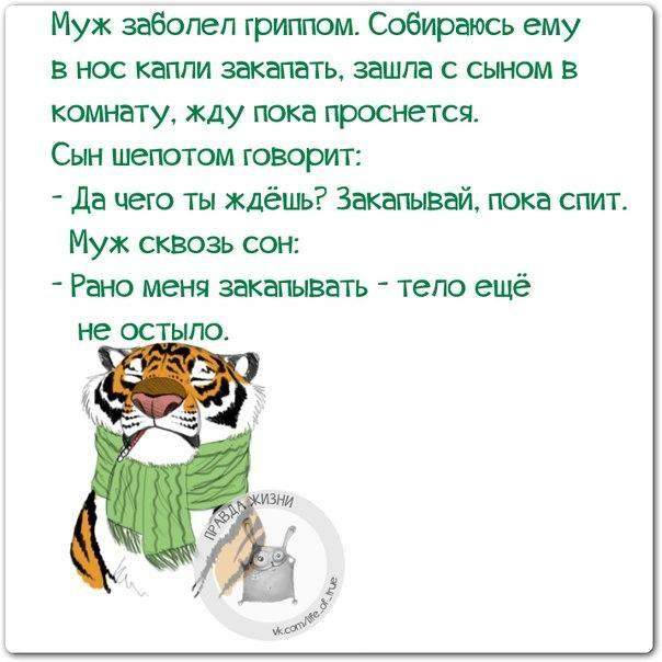 Прикольные фразочки в картинках =) 25 штук » RadioNetPlus.ru развлекательный портал