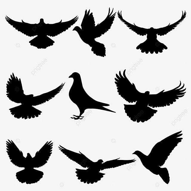Gambar Pigeon Silhouette Terbang Merpati Vektor Siluet Siluet Merpati Vektor Terbang Dove Silhouette Burung Png Dan Vektor Dengan Latar Belakang Transparan U Silhouette Vector Bird Silhouette Pigeon