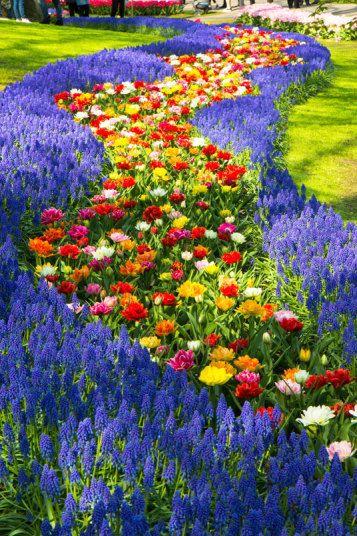 Keukenhof Gardens opens for 2015 Gardens Beautiful and