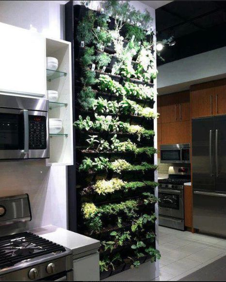 Kitchen herb and salad planter wall shelf with grow light. Awesome sauce! I wonder if you could hack two IKEA shelves to create this? Add some tubing in the back for drainage, more tubing for drip system... #indoorgarden
