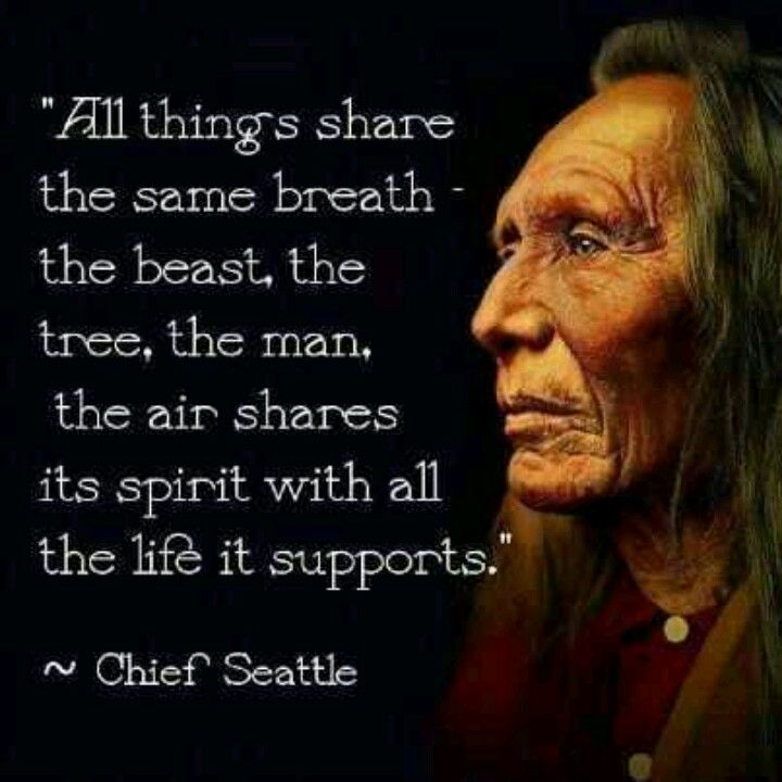 This is one of my favorite quotes from Chief Seattle.♥                                                                                                                                                                                 More