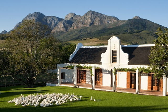 Cape Dutch Manor House Babylonstoren  Cape Dutch architecture is named for the style of the 17th and 18th century Cape of Good Hope. Characteristic features include soft, whitewashed walls of stone or primitive brick, ornate gables and thatched roofs.