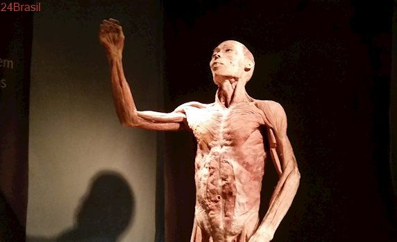 Exposição internacional inédita no ES apresenta curiosidades sobre o corpo humano