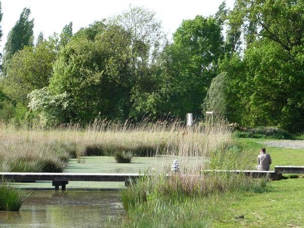 France │ St. Jacques Ecological Park by Atelier des Paysages- Bruel Delmar.. Footbridge in the reedbed. Credit:  Bruel & Delmar STJP